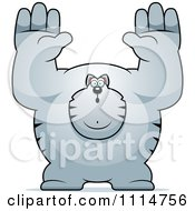 Clipart Buff Gray Cat Giving Up Royalty Free Vector Illustration