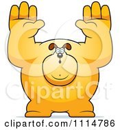 Clipart Buff Dog Giving Up Royalty Free Vector Illustration