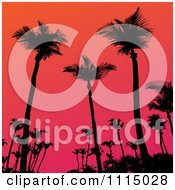 Clipart Silhouetted Tropical Palm Trees Against A Gradient Sunset Sky Royalty Free Vector Illustration