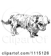 Clipart Vintage Black And White Terrier Dog 1 Royalty Free Vector Illustration