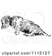 Clipart Vintage Black And White Terrier Dog 2 Royalty Free Vector Illustration by Prawny Vintage