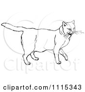 Clipart Vintage Black And White Chubby Cat Royalty Free Vector Illustration