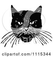 Clipart Vintage Black And White Angry Cat Face Royalty Free Vector Illustration