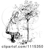 Clipart Vintage Black And White Girl Picking Flowers From A Shrub 1 Royalty Free Vector Illustration by Prawny Vintage