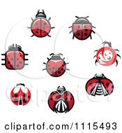 Clipart Spotted Ladybug Beetles Royalty Free Vector Illustration by Vector Tradition SM