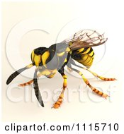 Clipart 3d Wasp Bee 1 Royalty Free CGI Illustration