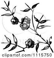 Clipart Retro Vintage Black And White Blossoming Branch Royalty Free Vector Illustration by Prawny Vintage