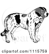 Clipart Retro Vintage Black And White St Bernard Dog In Profile Royalty Free Vector Illustration