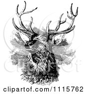 Clipart Retro Vintage Black And White Stag Buck Deer With Antlers 3 Royalty Free Vector Illustration