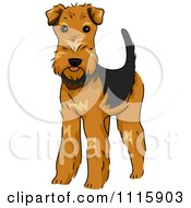 Clipart Cute Airedale Terrier Dog Royalty Free Vector Illustration