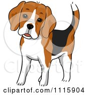 Clipart Cute Beagle Dog Royalty Free Vector Illustration