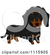 Clipart Cute Black And Brown Dachshund Dog Royalty Free Vector Illustration