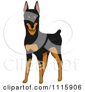 Clipart Cute Doberman Pinscher Dog Royalty Free Vector Illustration