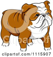 Clipart Cute English Bulldog Royalty Free Vector Illustration by BNP Design Studio