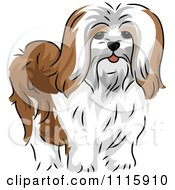 Clipart Cute Lhasa Apso Dog Royalty Free Vector Illustration