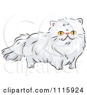 Clipart Long Haired White Persian Cat Royalty Free Vector Illustration