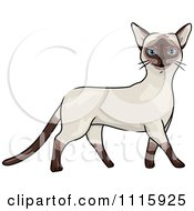 Clipart Happy Siamese Cat Walking Royalty Free Vector Illustration