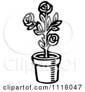 Clipart Retro Vintage Black And White Potted Rose Plant Royalty Free Vector Illustration by Prawny Vintage