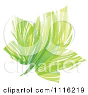 Clipart Abstract Green Maple Leaf Royalty Free Vector Illustration