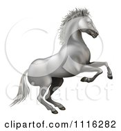 Clipart 3d Silvery White Horse Rearing Royalty Free Vector Illustration