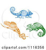 Blue Orange And Green Chameleon Lizards