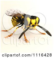 Clipart 3d Wasp Bee 4 Royalty Free CGI Illustration