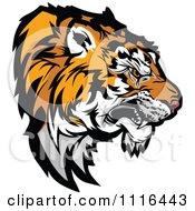 Clipart Growling Tiger Mascot Head Profile Royalty Free Vector Illustration by Chromaco