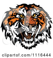 Clipart Growling Tiger Mascot Head Royalty Free Vector Illustration