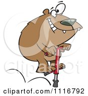 Cartoon Of A Bear Jumping On A Pogo Stick Royalty Free Vector Clipart by toonaday