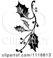 Clipart Retro Vintage Black And White Christmas Holly Sprig Design Element 1 Royalty Free Vector Illustration by Prawny Vintage #COLLC1116813-0178