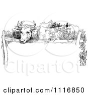 Clipart Of A Retro Vintage Black And White Cow Over Copyspace Royalty Free Vector Illustration