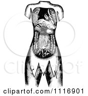 Retro Vintage Black And White Internal Human Anatomy
