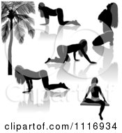 Vector Clipart Of Black And Gray Provocative Women Silhouettes And Reflections Royalty Free Graphic Illustration