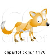 Nervous Or Shy Fox Looking Back Over His Shoulder by AtStockIllustration
