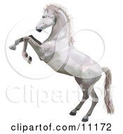 Poster, Art Print Of A White Horse Standing On Its Hind Legs While Rearing Up In Defense