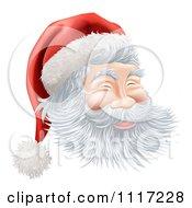 Cartoon Santas Face With A Jolly Expression Royalty Free Vector Clipart