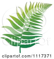 Clipart Of A Green Fern Branch 1 Royalty Free Vector Illustration by Lal Perera