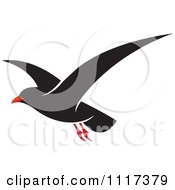 Clipart Of A Flying Black Seagull Royalty Free Vector Illustration