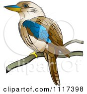 Clipart Of A Perched Kookaburra Bird Royalty Free Vector Illustration by Lal Perera #COLLC1117398-0106