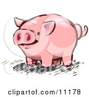 Pink Pig With A Curly Tail Clipart Illustration