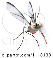 Clipart Of A 3d Mosquito With A Sign 2 Royalty Free CGI Illustration