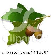 Royalty free leaf illustrations by elaine barker page 1