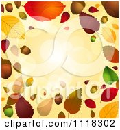 Clipart Of An Autumn Border Of Acorns And Fall Leaves With Flares Royalty Free Vector Illustration by elaineitalia