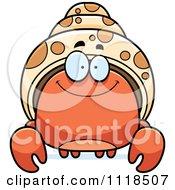 Smiling Hermit Crab