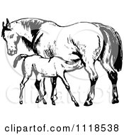 Clipart Of A Retro Vintage Black And White Mare Horse And Colt Royalty Free Vector Illustration