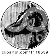 Clipart Of A Retro Vintage Black And White Horse Head 2 Royalty Free Vector Illustration by Prawny Vintage