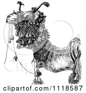Clipart Of A Retro Vintage Black And White Arabian Camel Royalty Free Vector Illustration