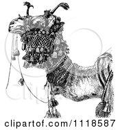 Retro Vintage Black And White Arabian Camel