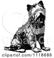 Clipart Of A Retro Vintage Black And White Terrier Dog Sitting Royalty Free Vector Illustration by Prawny Vintage