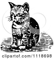 Clipart Of A Retro Vintage Black And White Kitten Sitting Royalty Free Vector Illustration by Prawny Vintage
